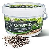 Bodenkaiser Rasendünger in Granulatform, organisch-mineralischer Dünger für Rasen mit Langzeit-Wirkung, 2,5 kg im praktischen Eimer