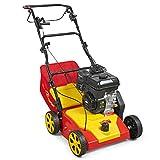 WOLF-Garten - Benzin-Vertikutierer V A 389 B; 16AHHJ0H650