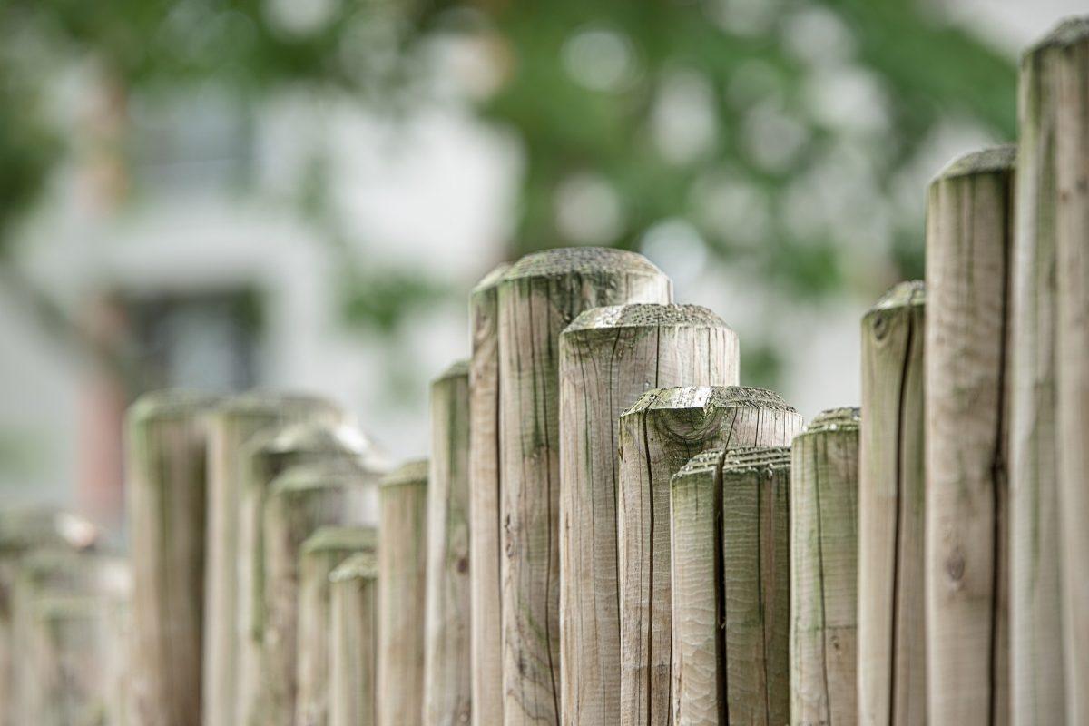 Sichtschutz im Garten – was eignet sich?