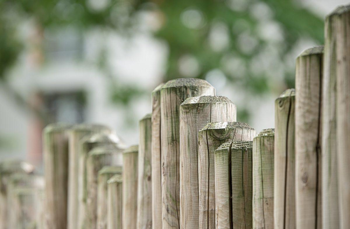 Sichtschutz Im Garten Was Eignet Sich Heimwerk24 De