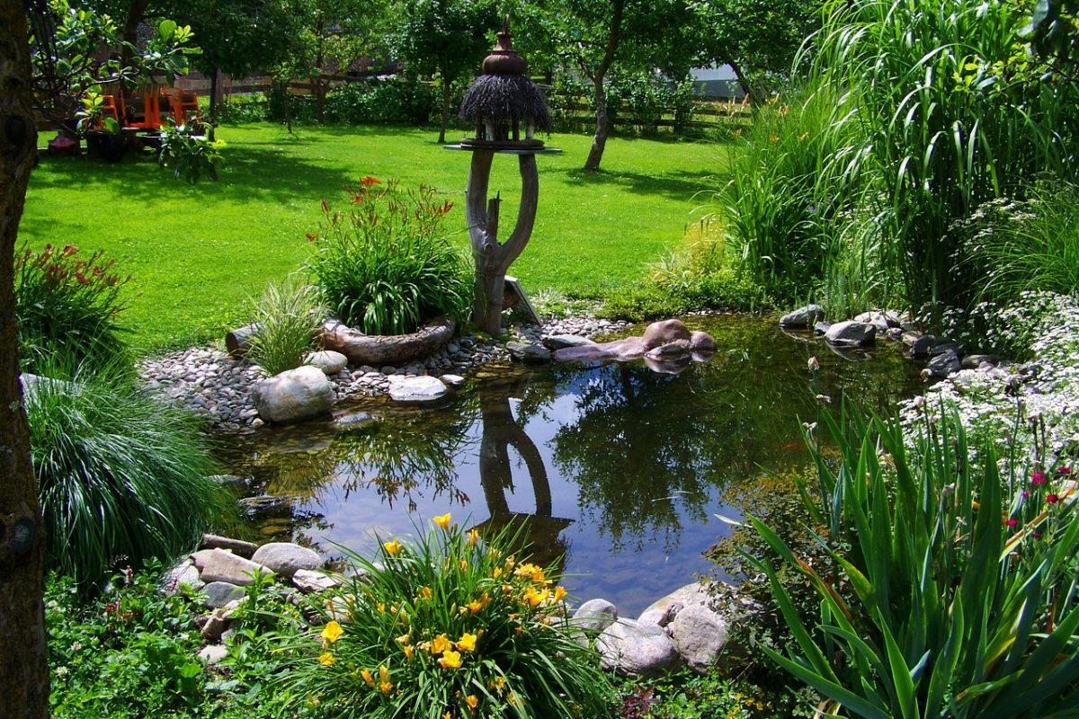 Gartenteich richtig reinigen – Die besten 8 Tipps