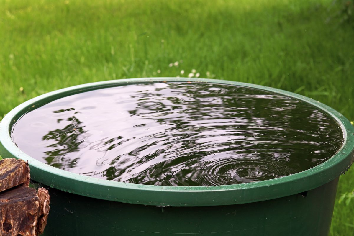 Regentonnen und Zisternen für den Garten