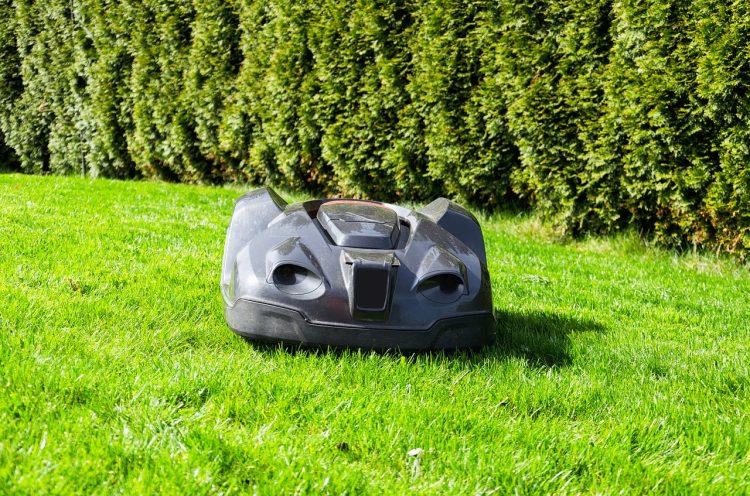Rasen Mähroboter im Garten